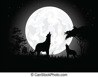 lobo, silueta, grito