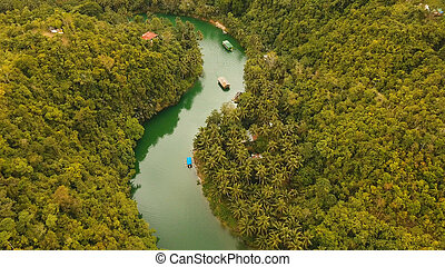 Loboc river in the rainforest Philippines, Bohol.