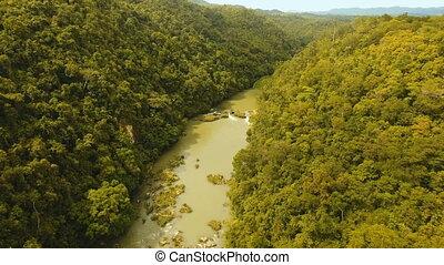 Loboc river in the rainforest Philippines, Bohol.