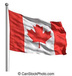 lobogó, közül, kanada