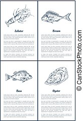 Lobster and Bream Bass Set Vector Illustration - Lobster and...