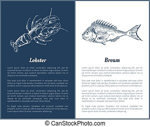 Lobster and Bream Fish Posters Vector Illustration - Lobster...