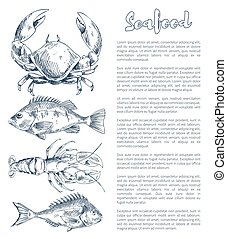 Lobster and Crayfish, Bream or Bass Seafood Poster - Big...
