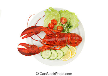 Lobster abd salad garnish on a plate viewed from above