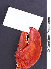 Lobster claw holding business card, isolated on slate stone.