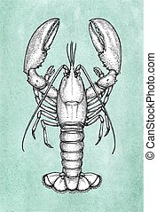 Lobster ink sketch on old paper. Watercolor background. Hand drawn vector illustration. Retro style.