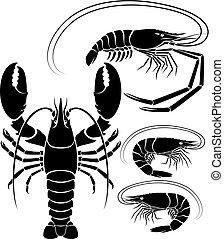 Lobster shrimp and prawn. Vector Illustrations.