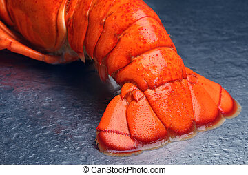 lobster staart