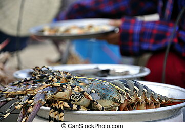 Lobsters at the Beach - Lobsters waiting to be served at the...