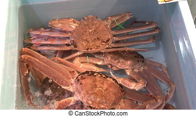 Local alive Snow crab for sale at Omicho Market, Kanazawa -...
