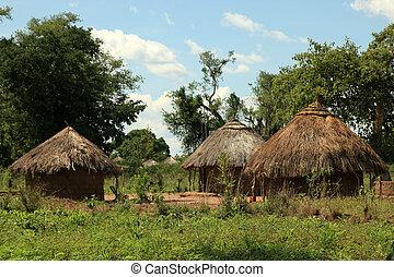 local, ouganda, -, afrique, village