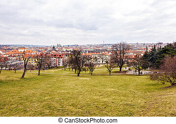 Local park in hill full of trees without leaves. Old town on...