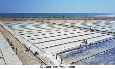 Local Workers Rake Salt on Plantations by Ocean