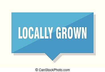 locally grown price tag - locally grown blue square price...