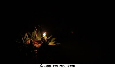 Locals and tourists celebrating Loi Krathong. People lowered...