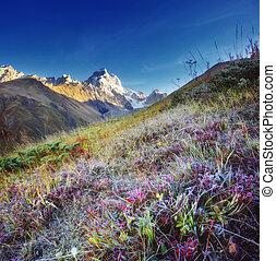 Location place Upper Svaneti, Mestia, Georgia, Europe. High Caucasus ridge.