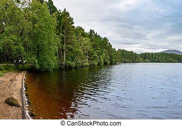Loch Garten in the Cairngorms National Park, Scotland -...