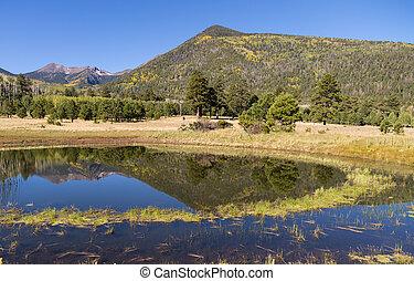 the San Francisco Peaks are reflected in a pond in lockett meadow near flagstaff arizona in fall