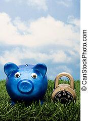 Locking in Your Savings