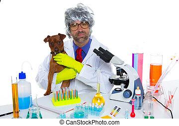 loco, veterinario, perro, laboratorio, científico, tonto,...