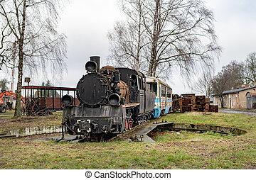 locomotives., 古い, 機関車, railway., 錆ついた, ゲージ, 場所, narrow, 蒸気, stationing