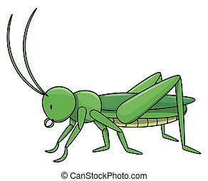 Locust cartoon illustration isolated white
