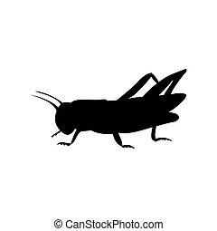 Locust grasshopper insect black silhouette animal. Vector...