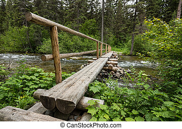 Log Bridge Crosses Rushing Creek