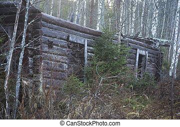 Log cabin falling apart
