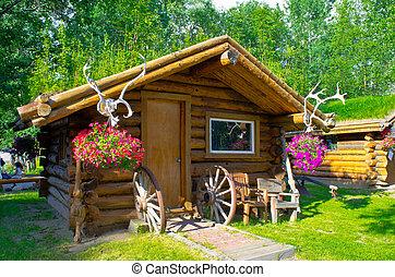log cabin home located in China Hot springs Alaska
