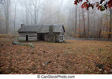 Log cabin in fall woods