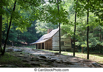 Log cabin in green woods - log cabin sitting among some ...