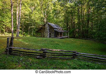 Log Cabin in Little Cataloochee
