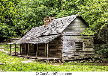 Log Cabin in the Woods