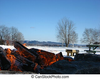 Log Fire in Winter