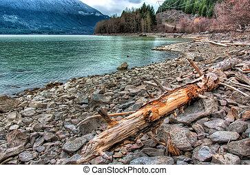 Log Lakeside on Rocky Shoreline