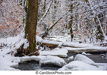 log over the brook in winter forest full of snow