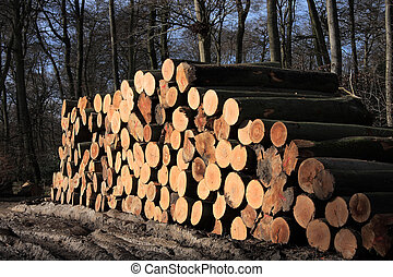 Log Pile - A stack of newly felled trees bound for the...