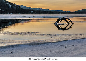 Log reflection winter mountain lake