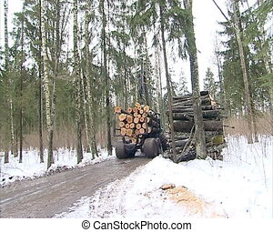 log transport tractor - special tree trunk logs transporting...