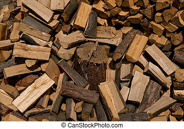 log under pieces of wood