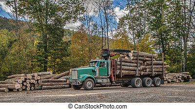 Logging - A logging truck picking up a load of fresh cut...