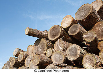 Logging industry - Stack of sawn tree trunks with copyspace
