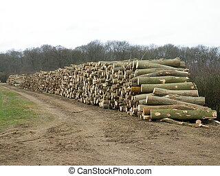 Logging. - Log pile from woodlands. For fuel.