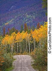 Logging road through mountains in autumn