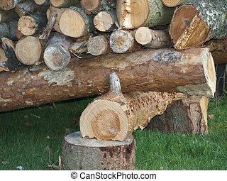 logging, South Bohemia, Czech Republic