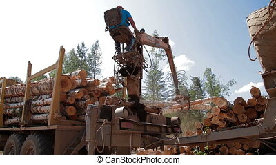 Logging Truck at Lumber Mill loads tree trunk - Logging...