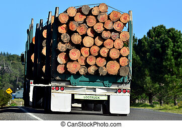 Logging truck during transportation in Northland New...