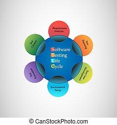 logiciel, vie, essai, cycle