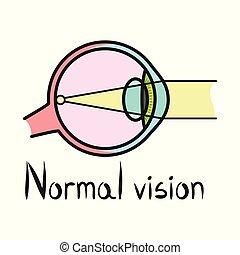 logo., 網, イラスト, アイコン, stock., 眼球, 要素, 視力, 器官, ベクトル